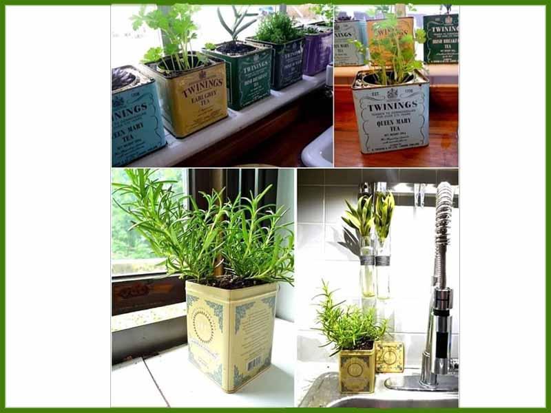 باغچه آپارتمانی - زندگی بانوی شهر