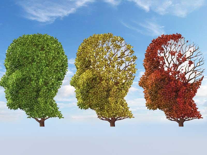 درمان بیماری آلزایمر - شادابی و سلامتی