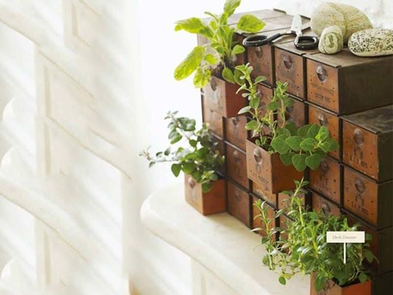 ایده های خلاقانه از انواع باغچه های آپارتمانی برای خانه ای سبز