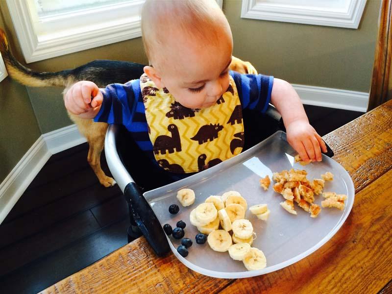 کودک یک ساله چه غذایی باید بخورد؟