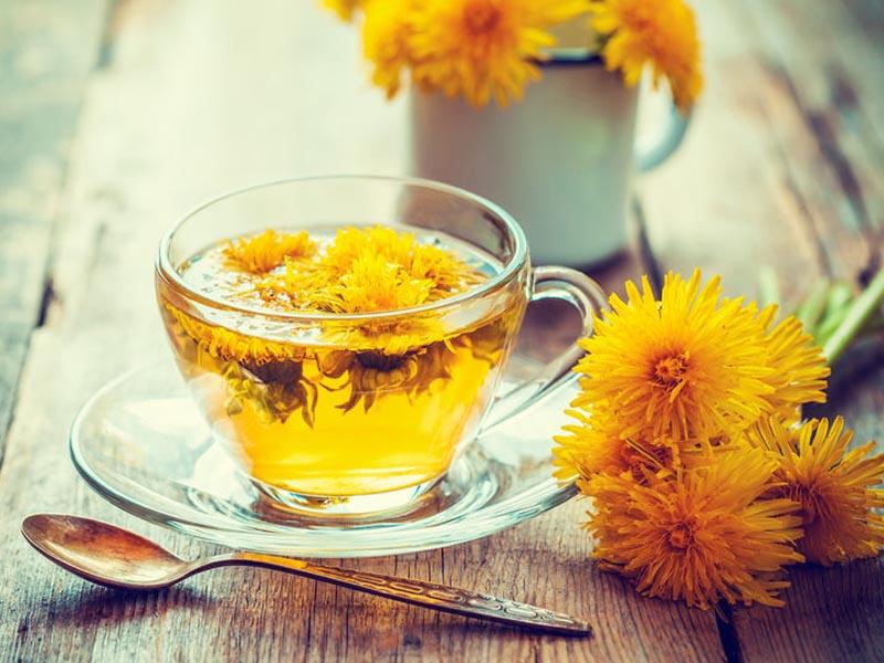 چای قاصدک چه خواصی دارد؟